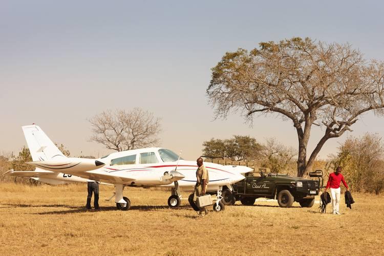 cp_nva_safari_arrival_750_500_70_s